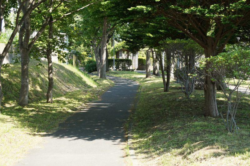 川原緑道と緑園通