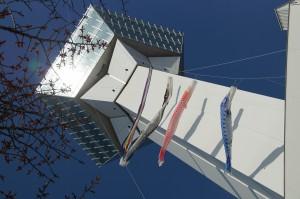 五稜郭タワーの鯉のぼり